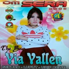 (3.19 MB) Via Vallen - Rasan-Rasan Tonggo Mp3